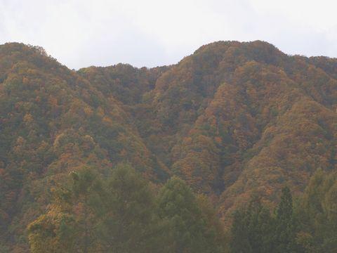 20131027akiyama.jpg